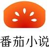 番茄小说官网